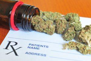 medical marijuana doctor jacksonville